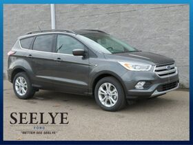 2018_Ford_Escape_SEL_ Kalamazoo MI