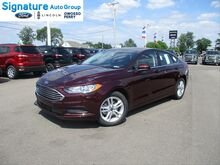 2018_Ford_Fusion_SE_ Perry & Owosso MI