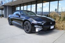 2018 Ford Mustang  Grand Junction CO