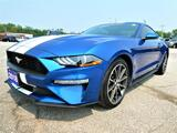 2018 Ford Mustang EcoBoost   Back Up Cam   Cruise Control Essex ON