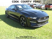 2018_Ford_Mustang_EcoBoost_ Adel GA