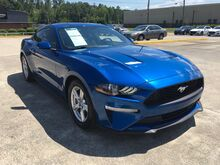 2018_Ford_Mustang_EcoBoost_ Central and North AL
