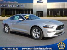 Ford Mustang EcoBoost Chattanooga TN