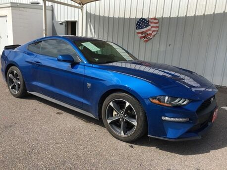 2018_Ford_Mustang_EcoBoost_ Mercedes TX