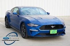 2018_Ford_Mustang_EcoBoost_ Paris TX