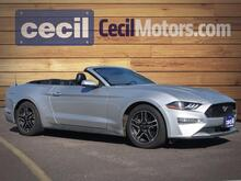 2018_Ford_Mustang_EcoBoost Premium_  TX