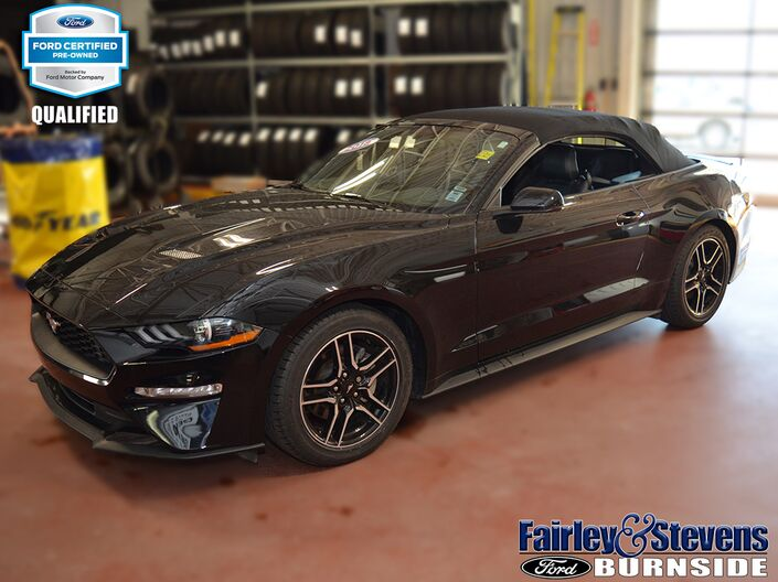 2018 Ford Mustang EcoBoost Premium Dartmouth NS