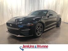 2018_Ford_Mustang_EcoBoost Premium Fastback_ Clarksville TN