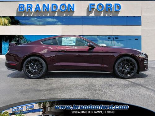2018 Ford Mustang EcoBoost Premium PERFORMANCE PACKAGE Tampa FL