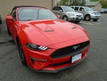Ford Mustang EcoBoost Premium Patchogue NY