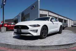 2018_Ford_Mustang_EcoBoost_ Rio Grande City TX
