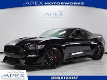 2018_Ford_Mustang_Shelby GT350R - 920A Pkg_ Burr Ridge IL