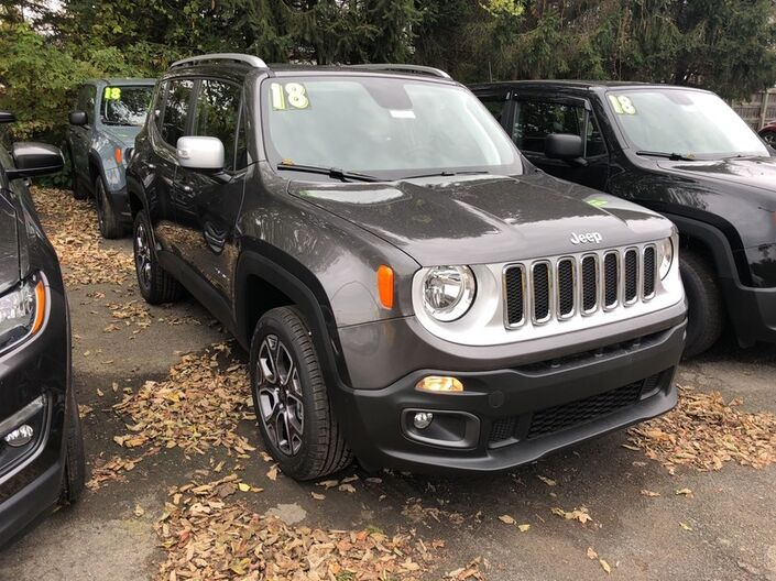 2018 Jeep Renegade Limited Owego NY