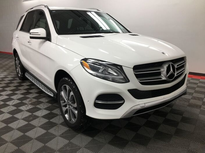 2018 Mercedes-Benz GLE GLE 350 4MATIC SUV Appleton WI