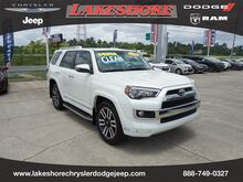 2018_Toyota_4Runner_Limited 2WD_ Slidell LA