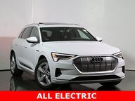 2019 Audi e-tron Premium Plus Chicago IL
