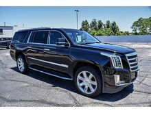 2019_Cadillac_Escalade ESV_Luxury_ Amarillo TX