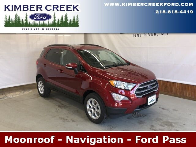 2019 Ford EcoSport SE Pine River MN