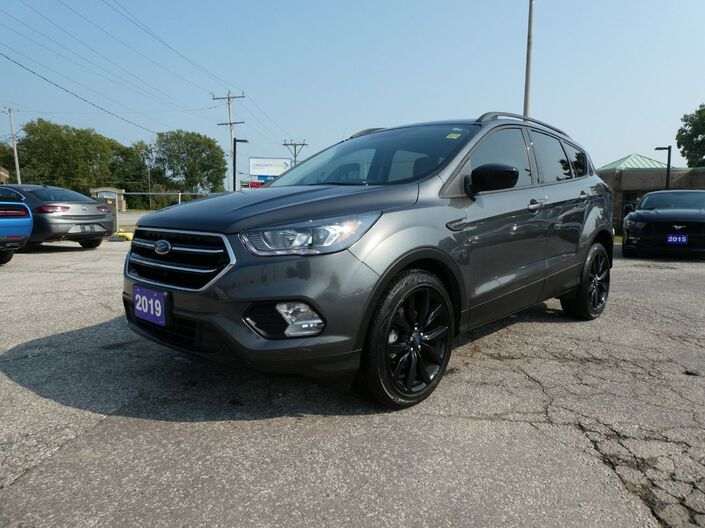 2019 Ford Escape SE Big Screen Heated Seats Remote Start Essex ON