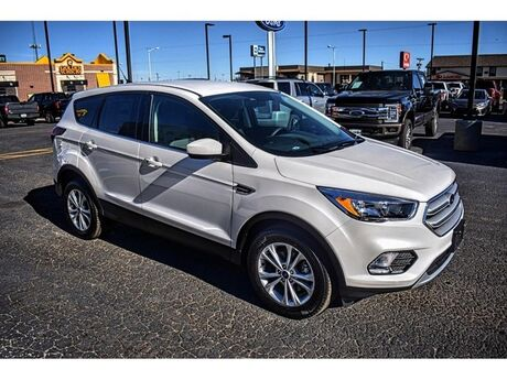 2019 Ford Escape SE Dumas TX