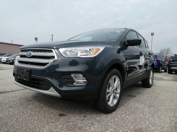 2019 Ford Escape SE Essex ON