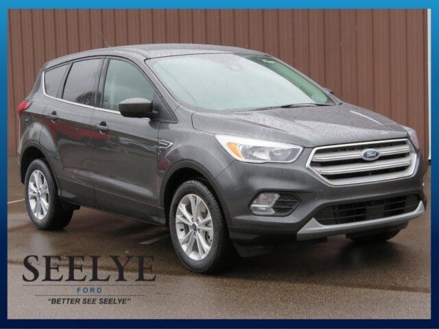 2019 Ford Escape SE Kalamazoo MI