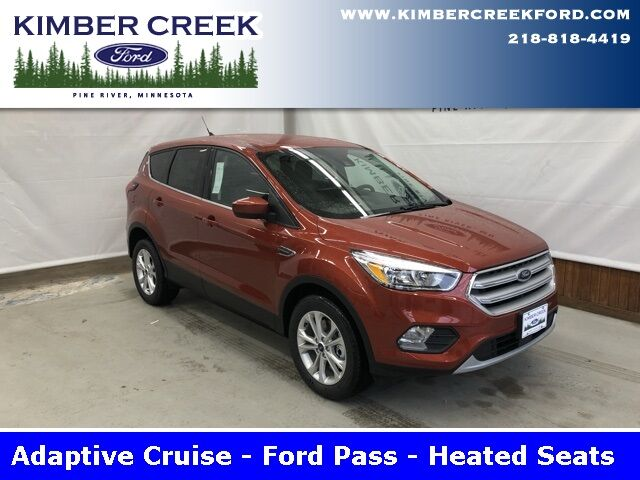 2019 Ford Escape SE Pine River MN