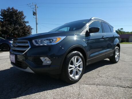 2019 Ford Escape SEL Heated Seats Remote Start Power Lift Gate Essex ON