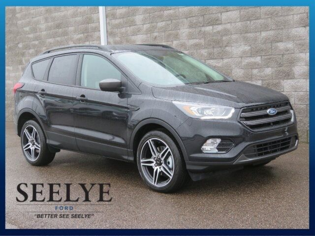 2019 Ford Escape SEL Kalamazoo MI