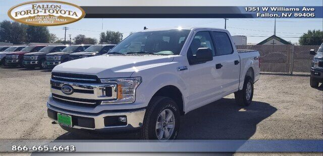 2019 Ford F-150  Fallon NV