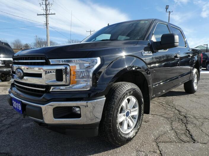 2019 Ford F-150 5.0L XLT | Big Screen | Back Up Cam | Cruise Control Essex ON