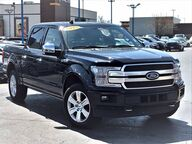 2019 Ford F-150 Platinum Chicago IL