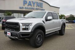 2019_Ford_F-150_Raptor_  TX