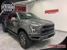 2019_Ford_F-150_Raptor_ Decatur AL