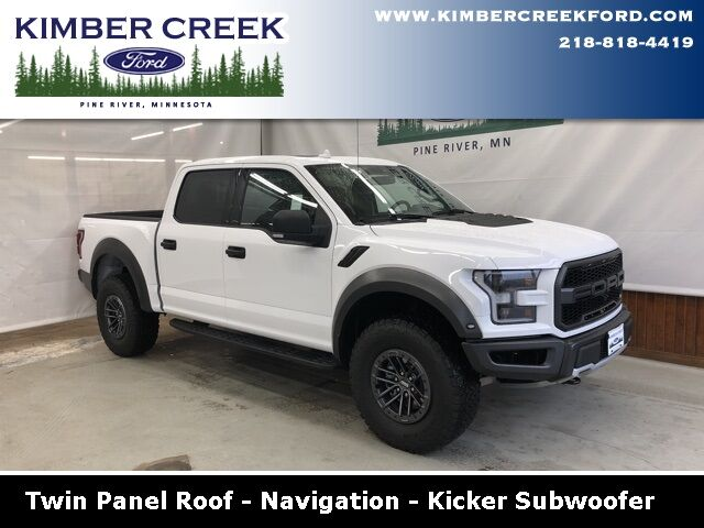 2019 Ford F-150 Raptor Pine River MN