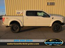 2019_Ford_F-150_Waldoch_ Watertown SD