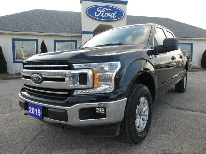 2019 Ford F-150 XLT - CREW - BACK UP CAM - LARGE SCREEN Essex ON