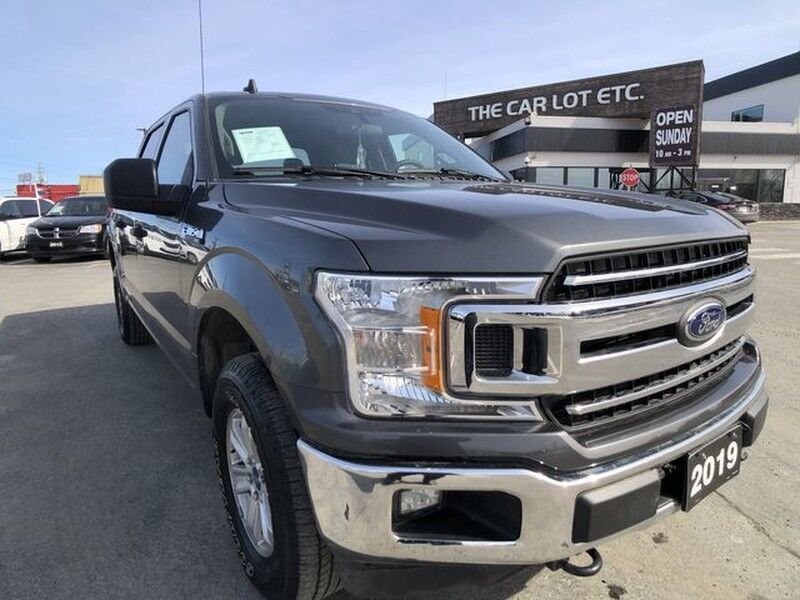 2019 Ford F-150 XLT Crew Cab 4X4 PREVIOUS DAILY RENTAL