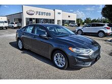 2019_Ford_Fusion_SE_ Pampa TX