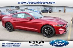 2019_Ford_Mustang__ Milwaukee and Slinger WI