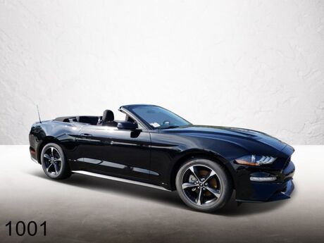 2019 Ford Mustang ECO Ocala FL