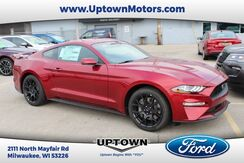 2019_Ford_Mustang_Eco-Boost Premium Coupe_ Milwaukee and Slinger WI