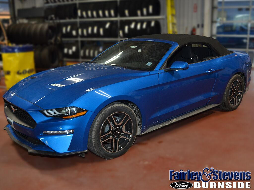 2019 Ford Mustang EcoBoost Dartmouth NS