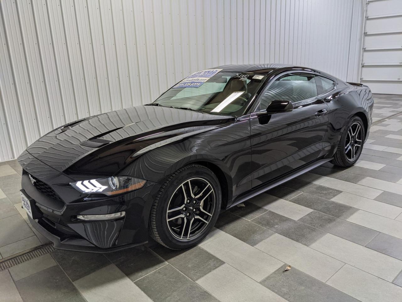 2019 Ford Mustang EcoBoost Duncansville PA