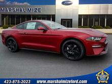 2019_Ford_Mustang_EcoBoost_ Chattanooga TN