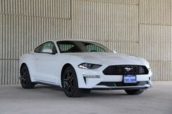 2019_Ford_Mustang_EcoBoost_ Mineola TX