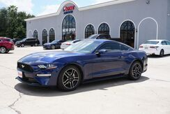 2019_Ford_Mustang_EcoBoost_ Mission TX