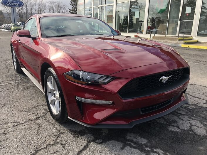 2019 Ford Mustang EcoBoost Owego NY