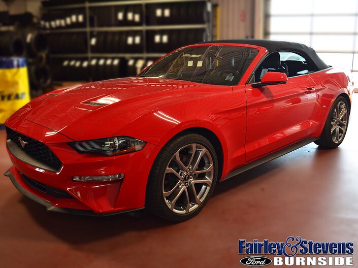 2019 Ford Mustang EcoBoost Premium Dartmouth NS