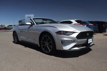 2019 Ford Mustang EcoBoost Premium Grand Junction CO